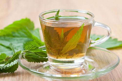 nettle leaf dried health boosting herb